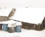 Bajo la nieve siete municipios de NL