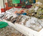 Alistan inspecciones al pescado y marisco