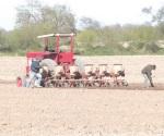 Fechas para agricultura