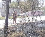 Atienden bomberos llamados de auxilio