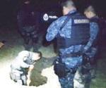 Pegan gendarmes al robo de combustible