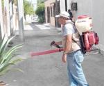 Descartan dengue, zika y chikungunya