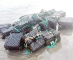 Aseguran 'coca' en playa de Acapulco