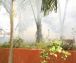 Reportan a 37 mujeres embarazadas con zika