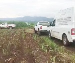 Hallan fosa clandestina con siete cuerpos en Tepic