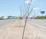 Urge salvar a los árboles