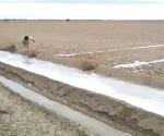 Deja canales congelados