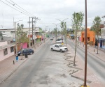 Podan árboles de ´La Calle del Taco´ por interferir la energía