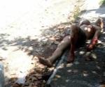 Cocodrilo casi se traga a pescador; sólo sale herido