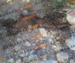 Hallan cadáver putrefacto en Reynosa