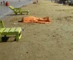 Muere reynosense ahogado en la playa