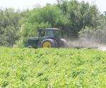 Esperan alza en fertilizantes