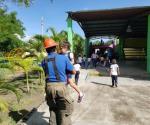Ataca enjambre a más de 10 niños de kínder en San Fernando