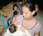 Cuadros infecciosos las enfermedades más comunes en menores