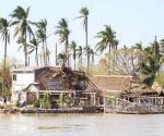 Afecta Willa a miles en Nayarit