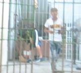 Por buscar camorra fue a parar a la cárcel