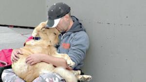 Imágenes demuestran que el amor de nuestros perros es incondicional