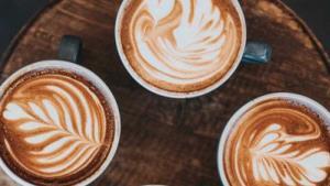Los 17 tipos de café y sus características y beneficios