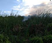 Evacuan dos escuela por fuerte incendio en el sur de Altamira