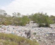 Inunda a Reynosa la basura de los depósitos ilegales