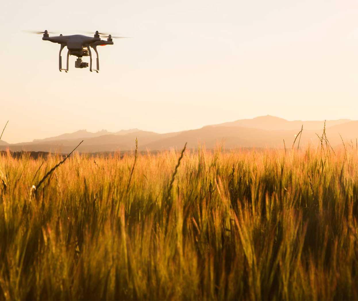 Drones en aseguradoras