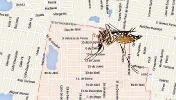 Es la Satélite uno primera en dengue