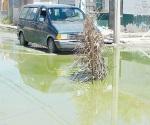 Piden acabar con fuga de aguas negras