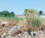 Retira Itavu los terrenos abandonados