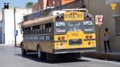 Peligran más de 200 unidades de transporte