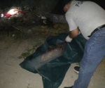 Cocinaban a rivales en penal de Coahuila