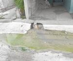 Demandan atención a problema con las aguas residuales