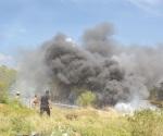 3 pastizales ardiendo movilizan a bomberos