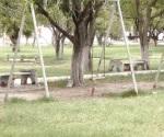 Urge una manita a la plaza de la Almaguer