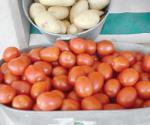 Sube precio del tomate