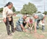 Reforestarán Parque Cultural con mil árboles