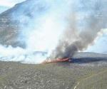 Devasta el fuego más de 500 Ha. en ocampo