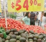 Desciende precio de aguacate y otros frutos