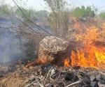 Incendio forestal cerca de bombas