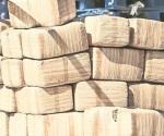 Decomisa Sedena más de 1 Ton. de mariguana en Sonora