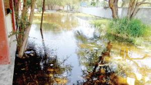 Se inunda escuela por filtraciones del canal Rodhe