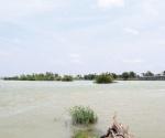 Pierden terreno en el río Bravo