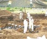 Buscarán exhumar e identificar cuerpos de fosas comunes