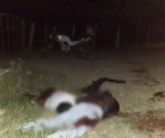 Masacran a tiros a una pareja en brecha