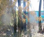 Arde pastizal y humo invade domicilios