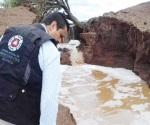 Reportan pérdida de ganado por lluvias