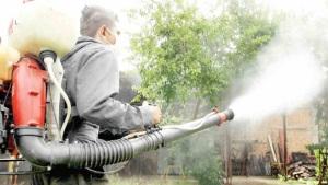 Van con todo contra mosco del dengue