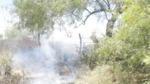 Extinguen incendio en lote enmontado