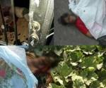 Mueren 3 por la violencia en las últimas 24 horas