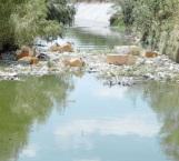 Urge retiro de maleza de los drenes y canales