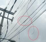 Afectaciones por estallido de líneas de CFE